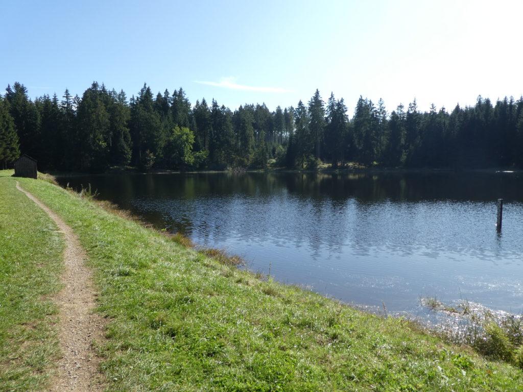 Oberer Hahnenbalzer Teich