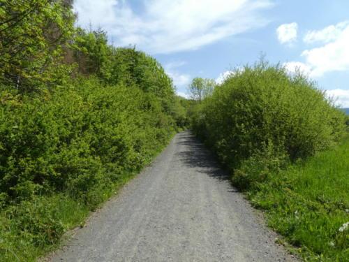 Der Hexenstieg nahe Osterode
