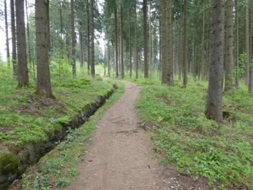 Beginn der zweiten Etappe des Harzer Hexenstiegs