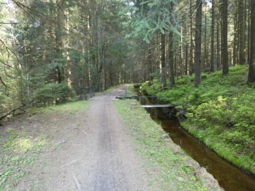 Wanderweg am Dammgraben