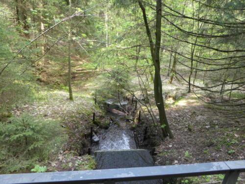 Überlauf des Dammgraben