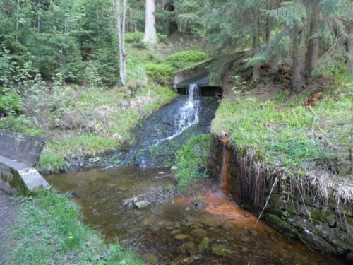 Mündung großer Gerlachsbach in den Dammgraben. Rechts der Zufluss der Eisenquelle