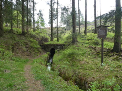 Der Dammgraben kommt aus einem Stollen.