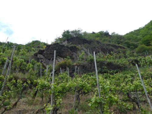 Schroffe Felsen und Terassen mit Weinreben
