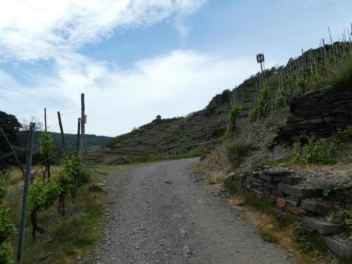 Gut erkennbar der Wanderwegs am Berghang