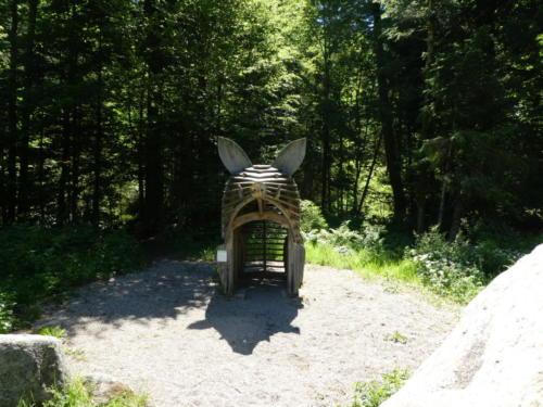 Kletterschwein