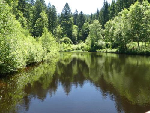 Kleiner See an der Elz