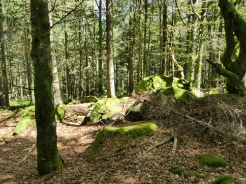 Watzeck-Gipfel