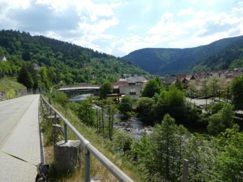 Blick zur alten Holzbrücke in Forbach
