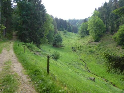 Frankenbachtal