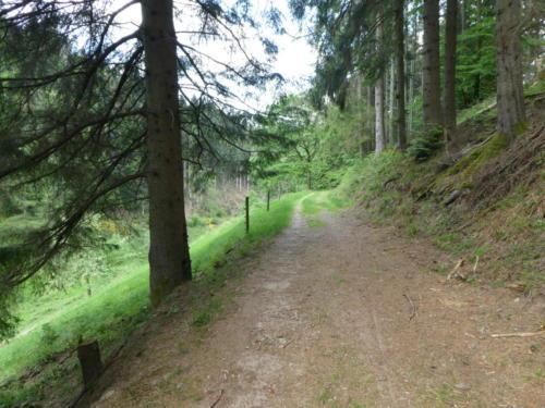 Blich ins Frankenbachtal