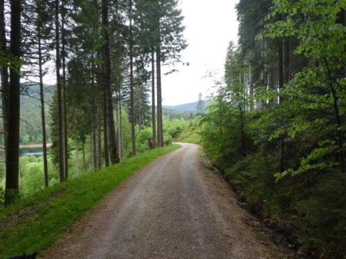 Weg zum Schwarzenbachstausee
