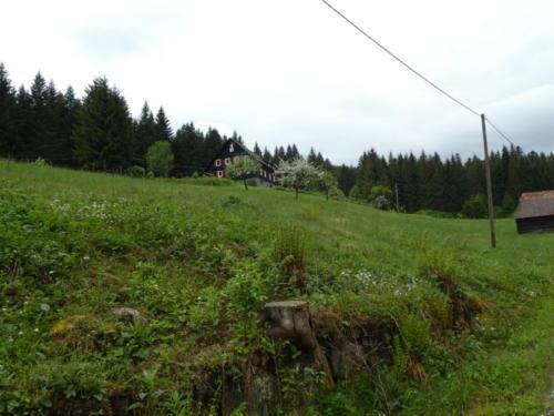 Seebachhof
