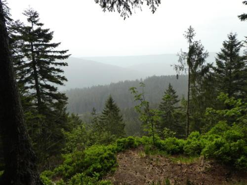 Aussicht beim Aufstieg zur Badener Höhe