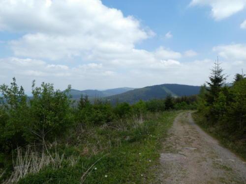 Blick über den Schwarzwald. Ganz hinten die Badener Höhe