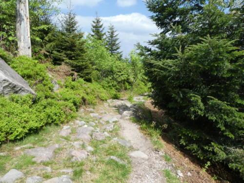 Blick zurück auf den Steinigen Weg zur Hornisgrinde