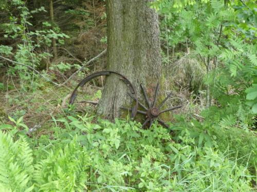 Altes Wagenrad am Wegesrans