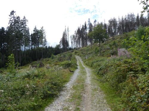 Wanderweg, immer weiter Bergauf