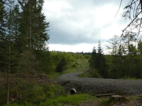 Die Forstwirtschaft zeigt hier deutliche Spuren