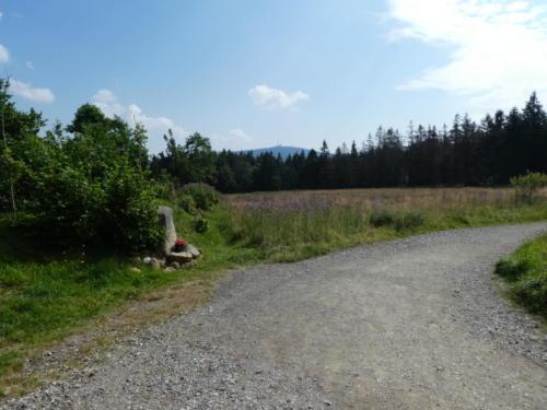 Blick von Torfhaus zum Brocken