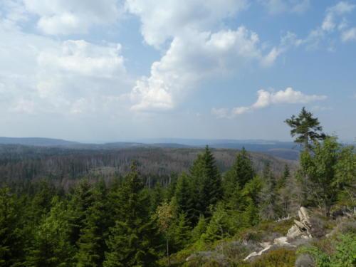 Ausblick Richtung Torfhaus