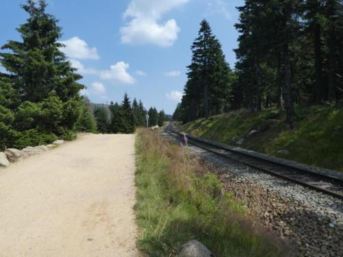 Aufstieg zum Brocken entlang der Harzer Schmalspurbahn