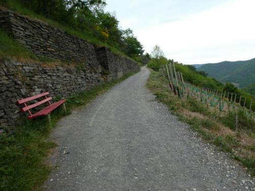 Der Rotweinwanderweg