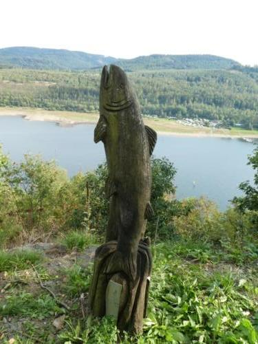 Der Fisch ist bereits vom Harzer Försterstieg bekannt.