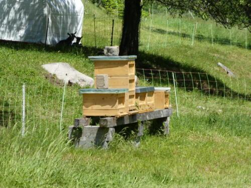 Bienenstock an einem Bauernhof