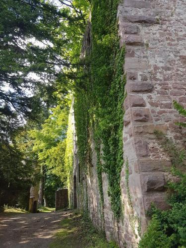 Ruine Schloss Neuenburg