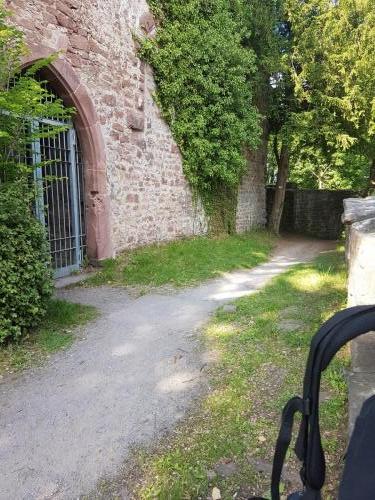 Ruine am Schloss Neuenburg