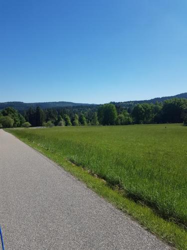 Wanderweg und Ausblick im Schwarzwald