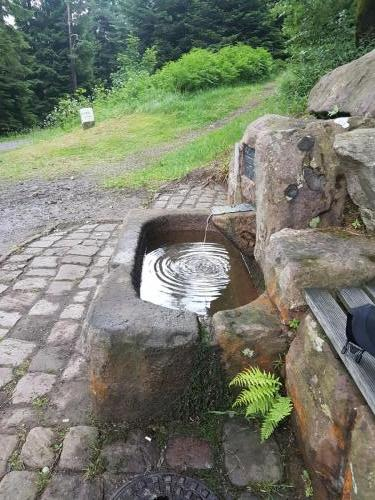 Quelle an der Hahnenpfalzhütte