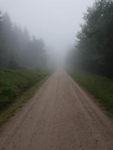 Wanderweg in den Nebel...