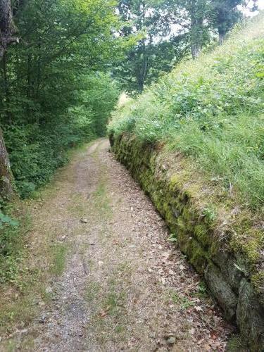 Entlang an einer Steinmauer führt der Weg