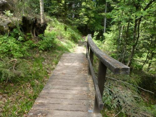 Holzbrücke am Aufstieg zur Hornisgrinde