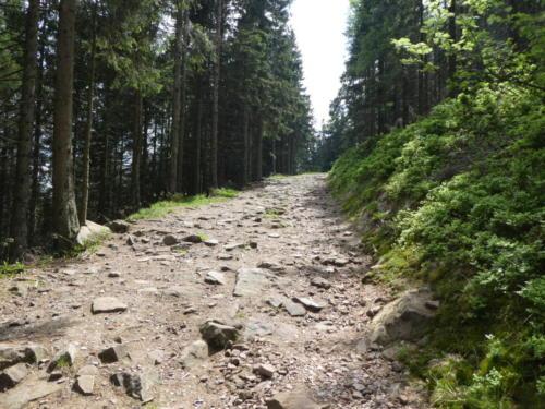 Steiniger steiler Weg hinauf zur Hornisgrinde