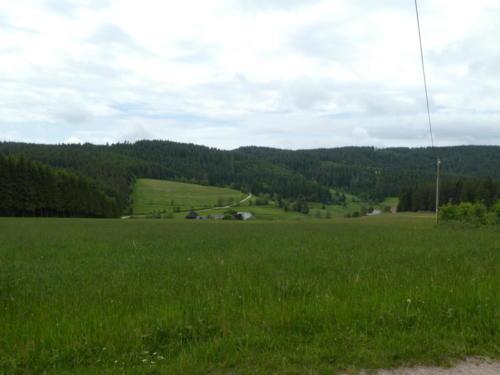 Blick über Gras- & Weideland