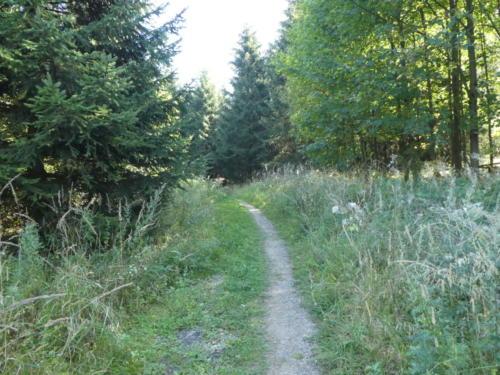Wanderpfad
