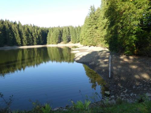 Haderbacher Teich mit wenig Wasser